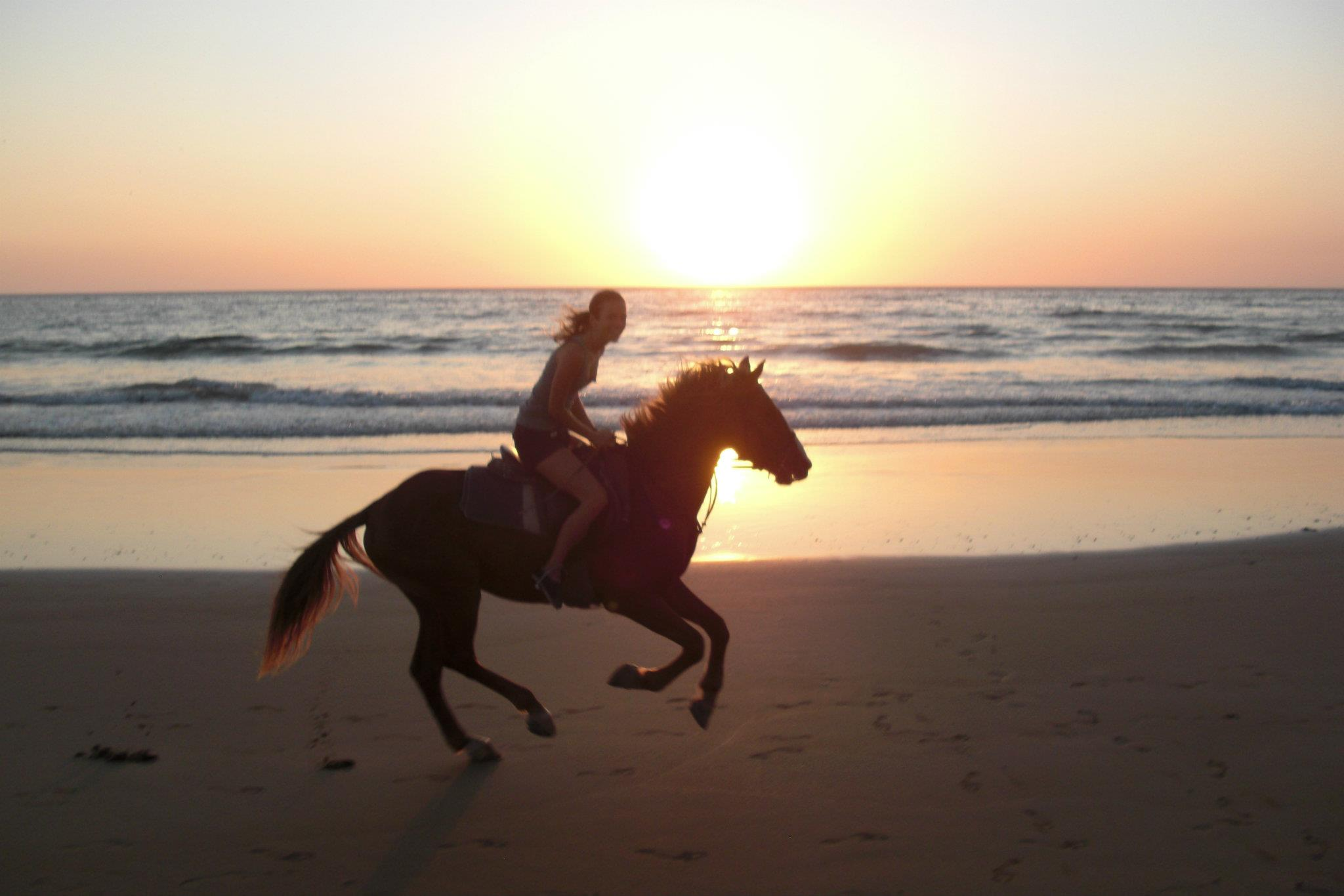 Sunset horseride at Crocs beach |The Spot Morocco, Surf camp Morocco, Surfing Morocco, Surf Morocco, Surf School Morocco, Surf Holidays in Morocco, Surf Taghazout