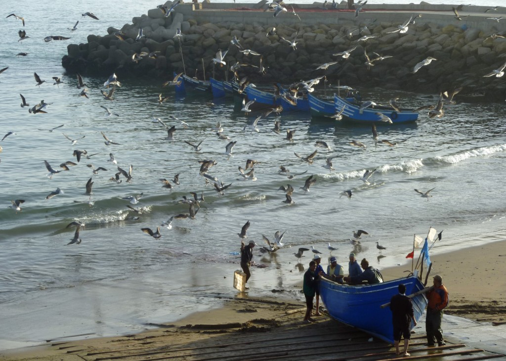 Fishermen at Imsouanne Morocco| The Spot Morocco,Taghazout, surf Morocco, where to surf in Morocco, surf camp Morocco, surfing Morocco, Morocco surf