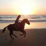 Sunset Horse Riding in Morocco | The Spot Morocco, surf holiday in Morocco, surf camp markko, surf in morocco